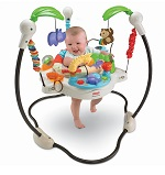 Baby Bouncer Review Guide