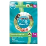 Purina ONE SmartBlend Dry Cat Food