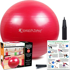 SmarterLife Products Premium Exercise and Stability Ball