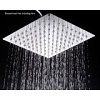 WaterBella Stainless Steel Rain Style Showerhead