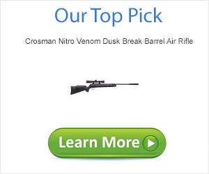 Top Rate Ten Air Rifle Top Pick