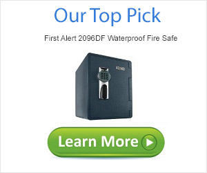 Top Rate Ten Fireproof Safe Top Pick