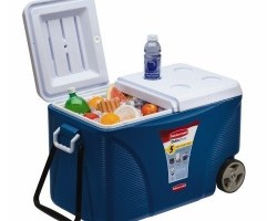 best cooler for camping - review guide