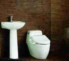Best bidet toilet seat review guide