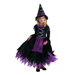 fairytale-witch-costume-by-disguise