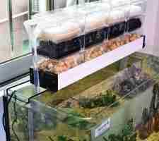 best-aquarium-filter-review-guide