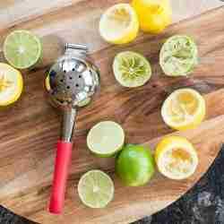 Best Lemon Squeezer - Review Guide